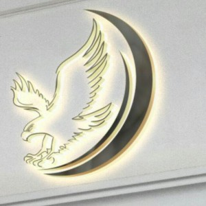 شركة الصقر الأول لخدمات النقل الجوي